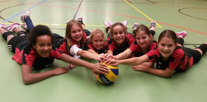 Volleyball Bundesliga